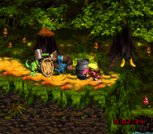Donkey Kong Country 3 - Dixie Kong's Double Trouble ! ingame screenshot